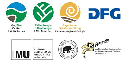 logos_palges